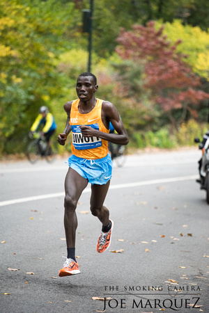 New York City Marathon 2015 _85E2559 035