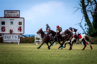 Horse Polo with Nikon 200-500mm Lens and D500 _D5B8915